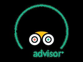 tripadvisor_coe_certificate_2019_HUN_s